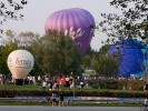 Hot air balloon festivals organization